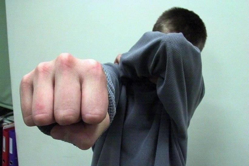 Kohus trahvis aastaid naist ja kasulast peksnud meest