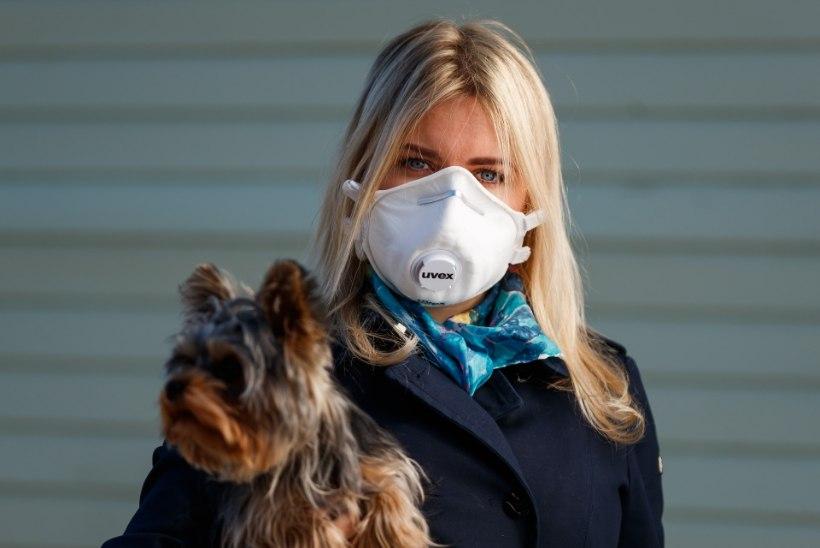 ARSTID TEEVAD SELGEKS: need inimesed ei tohi tõesti maski kanda!
