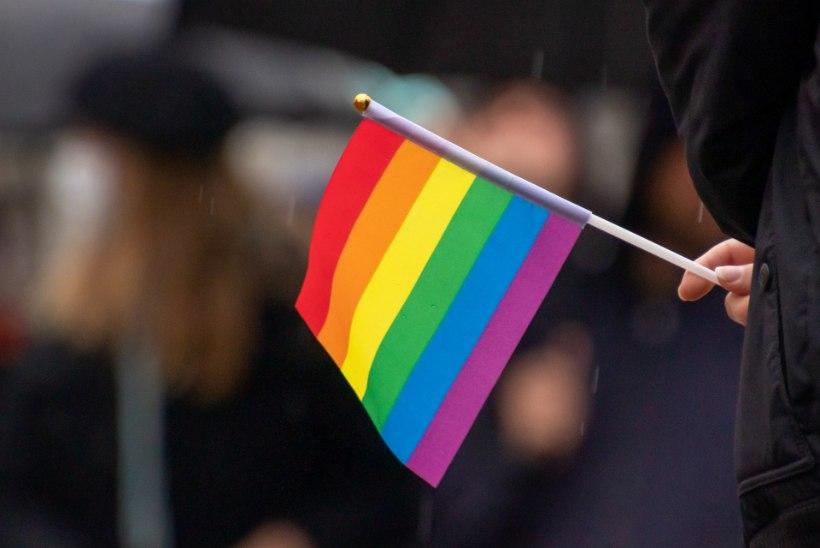 HÄÄLED KUULDAVAKS   Biseksuaalne nooruk imestab: miks inimesed meid kardavad? Mõni pole homoga kunagi kohtunudki!