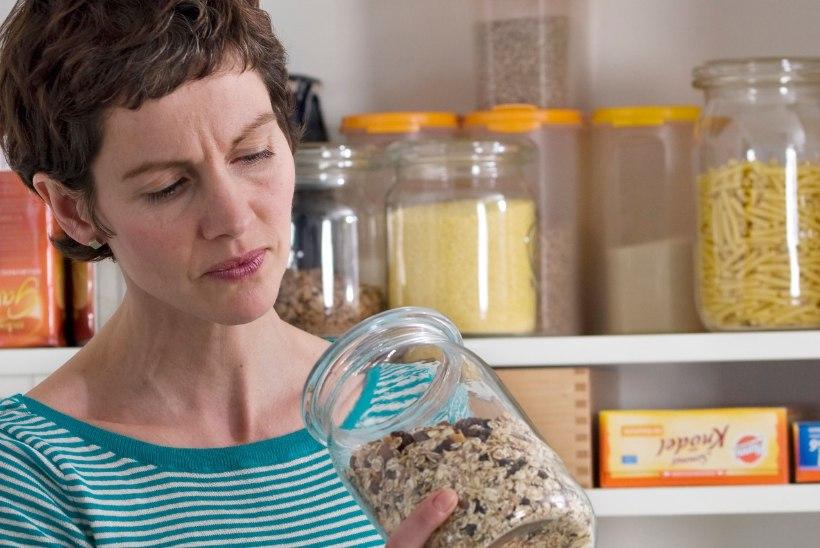 Kahjur möllab köögikapis: kuidas neist vabaneda?