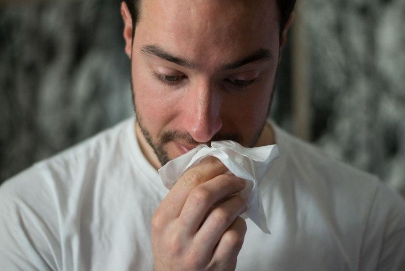 KAS SEE ON NORMAALNE? Arst selgitab, miks nina hakkab õues vett jooksma