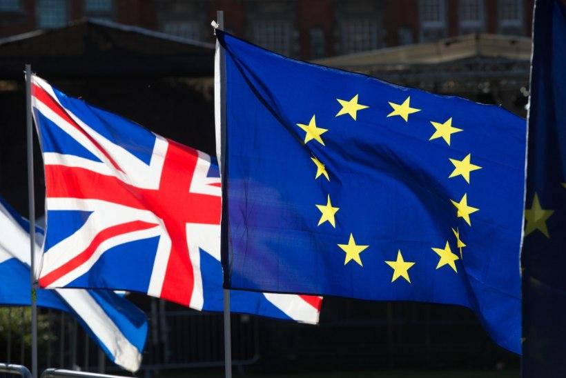 Suurbritannias elav eestlanna: isegi paljud Brexiti pooldajad ei osanud aimata, et asi võib lõppeda leppeta