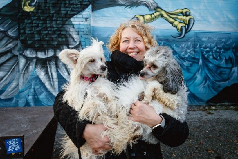 """Hooletusse jäetud koera perenaiseks saanud Anne Raiste: """"Mõtlesin, ega ma täna koeraga koju tule!"""""""
