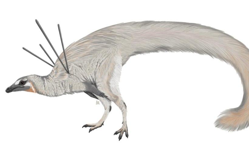 Veider dinosaurus lõi teadlased pahviks