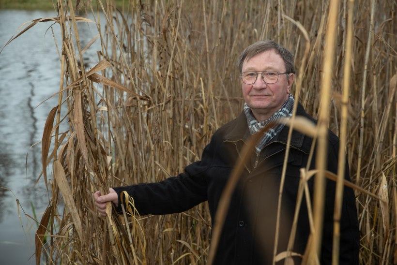 """Aasta isa ja kalateadlane Arvo Tuvikene: """"Lõhe ei ole väga tark, aga ta on maitsev."""""""