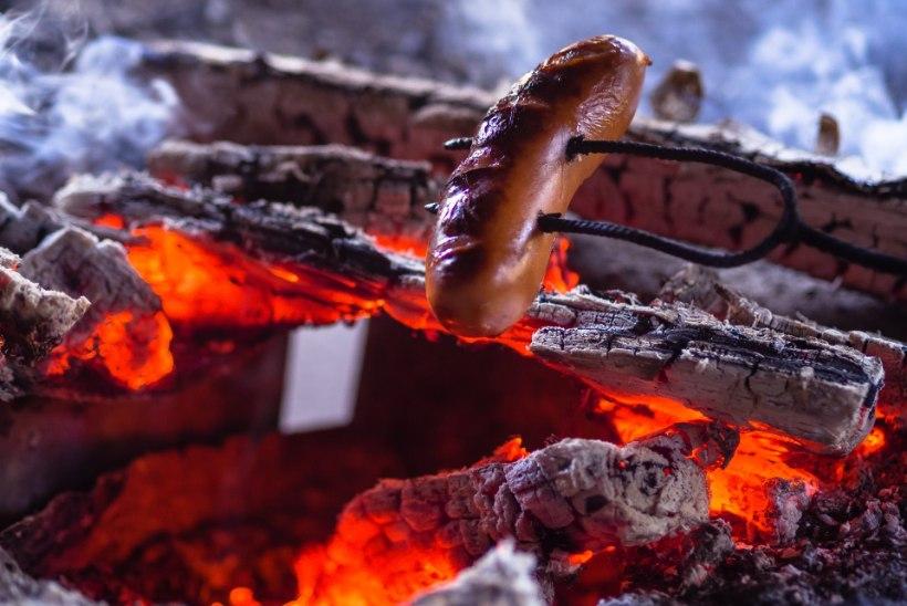 VOLBRIÖÖ | Tuleta meelde, millele lõkke tegemisel kindlasti tähelepanu pöörata!