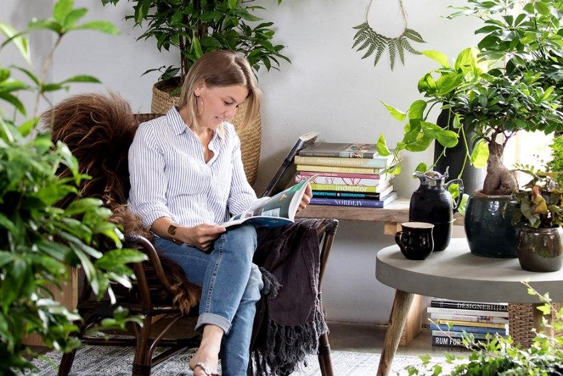 Koduõhk puhtaks! 10 parimat õhupuhastajat-toataime