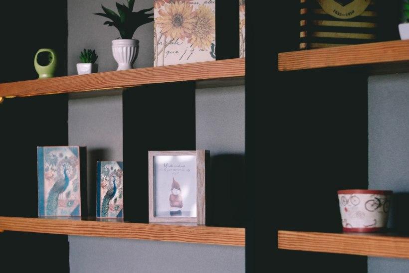 Peatoimetaja kolumn | Koduomanikke iseloomustavad nende riiulid