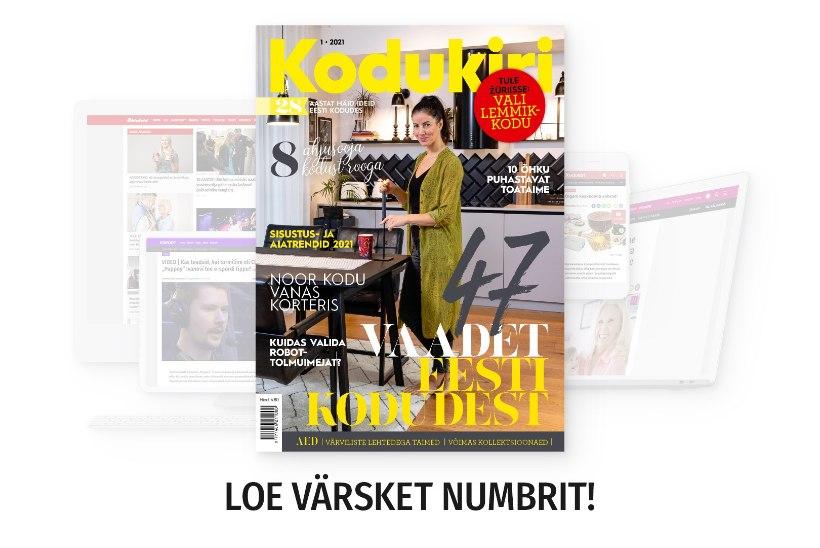 JAANUARI KODUKIRI | Loe ajakirja nüüd ka veebist!