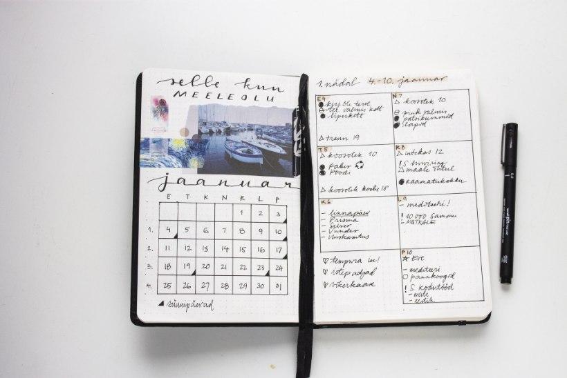 PLANEERI JA KAUNISTA | Just see plaanur võib sinu jaoks olla parem kui tavaline kalendermärkmik!