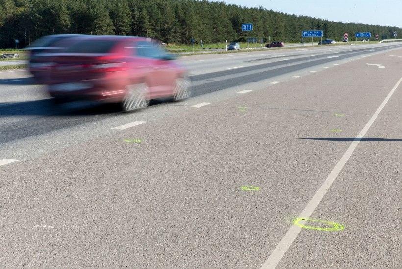 INIMELU HIND 1400 EUROT: naine jäeti metslooma pähe maanteele surema, süüdi pole justkui mitte keegi