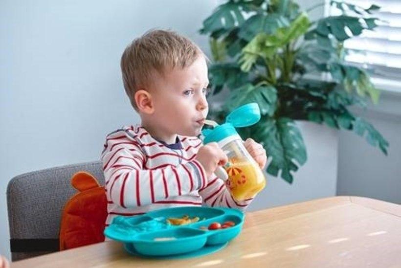 Toit kukub pidevalt maha? Põnn määrib kõik ära? Need vidinad aitavad iga lapsevanemat!