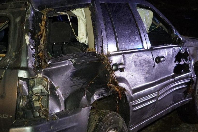 FOTOD | Libedus põhjustas kokku viie auto avarii