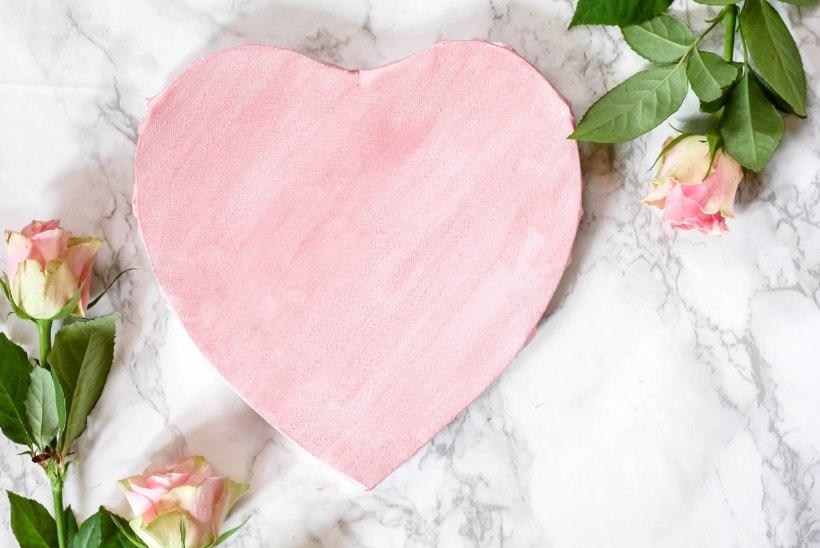MILJON SÜDAMEKUJULIST KOMMIKARPI | Hoidu muutmast sõbrapäeva roosa prügi päevaks!