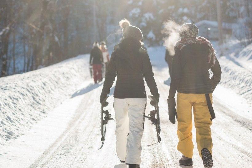 Romantiline jõulukink: retk talvisesse loodusesse