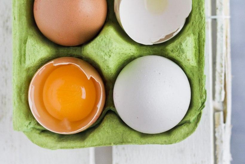 NIPP: kuidas küpsetada, kui tervis ei luba mune tarbida?