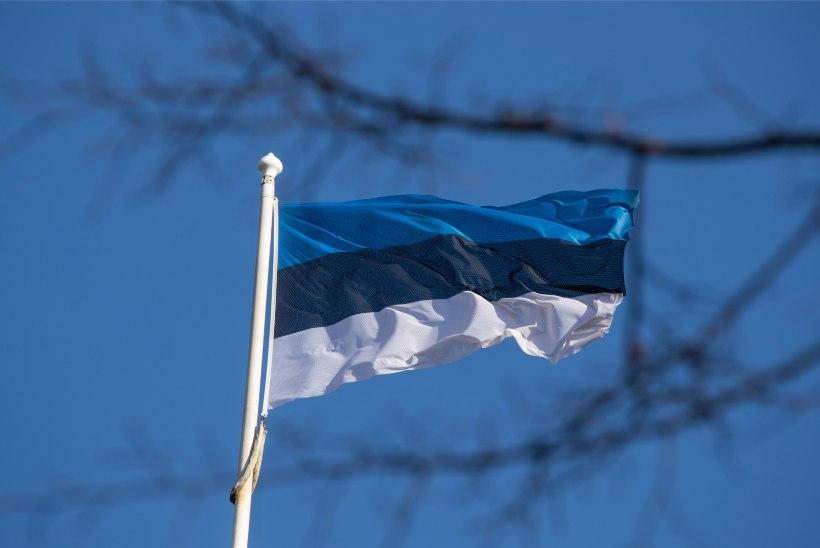 GALERII   Sissejuhatus pidupäeva: päikesepaiste meelitas inimesed lipuheiskamisele