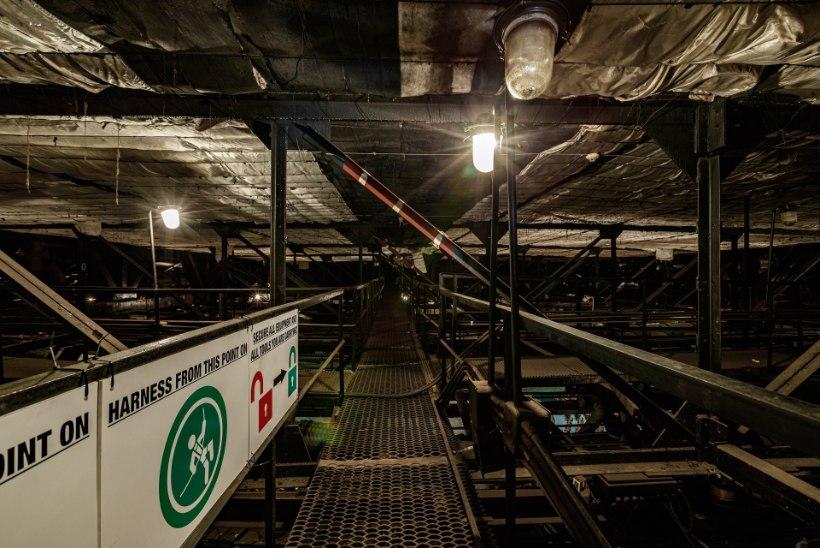 ÕL VIDEO JA GALERII | TUUR LINNAHALLIS: pimedast pööningust veel pimedamate evakuatsioonikäikudeni