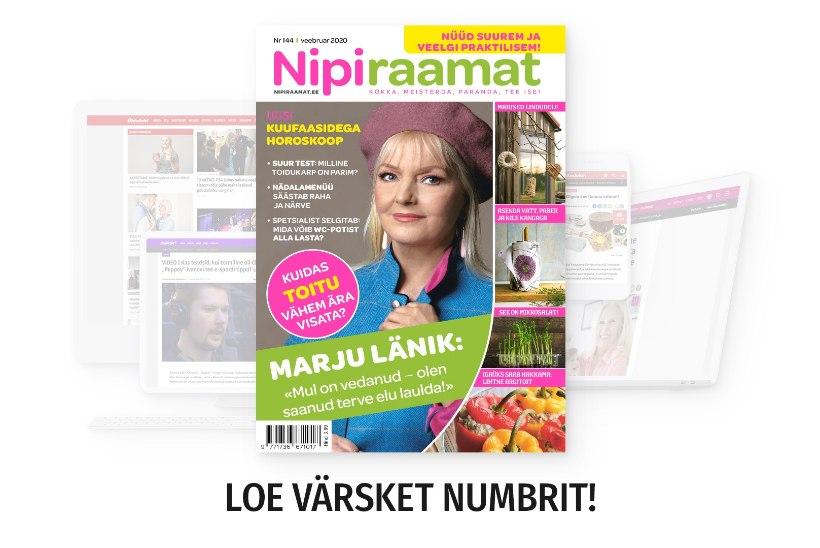 VEEBRUARIKUU NIPIRAAMAT | Loe nüüd ajakirja ka veebis!