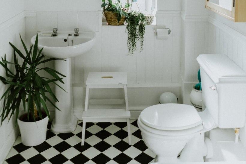 Lugeja küsib: kas toidujäätmeid võib WC-potti visata?