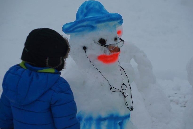 GALERII | UHKE PARAAD: Väätsal sai kokku tuhat lumememme!