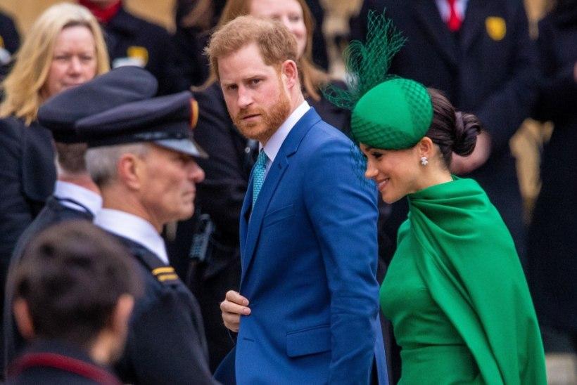 Prints Harry langes vene tüngameeste ohvriks! Jutuks tuli nii Epstein, Megxit kui ka kliima