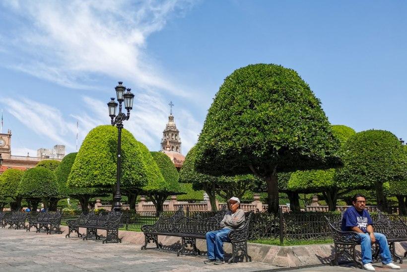 ÕL MEHHIKOS | Torsby kaudu Leóni. Teekond rallimaailma suurima saladuseni