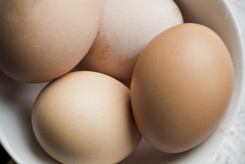 LUGEJA KÜSIB! Miks munavalged vahtu ei lähe? Mis aitaks?
