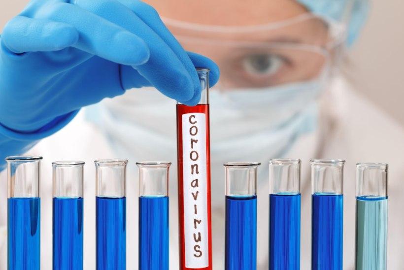 EESTI BIOKEEMIK HOIATAB: koroonaviirus püsib nakkusohtlikuna õhus mitu tundi, pindadel isegi mitu päeva!