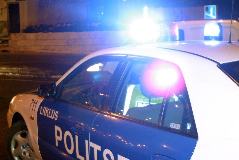 Peatumismärguannet eiranud naine rammis politseisõidukit