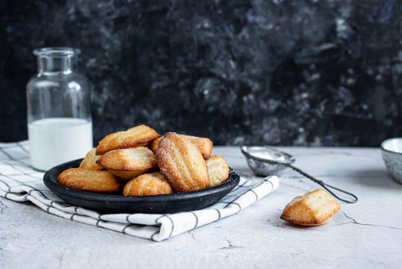 TOIDUTÄHESTIK | Madeleine'i koogikesed