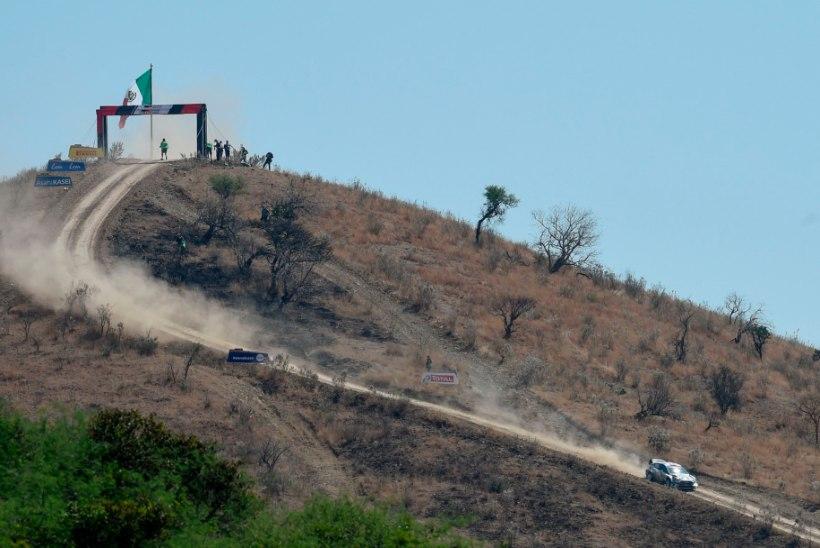 AMETLIK KINNITUS: koroonaviirus jõudis Mehhikos WRC-sarja