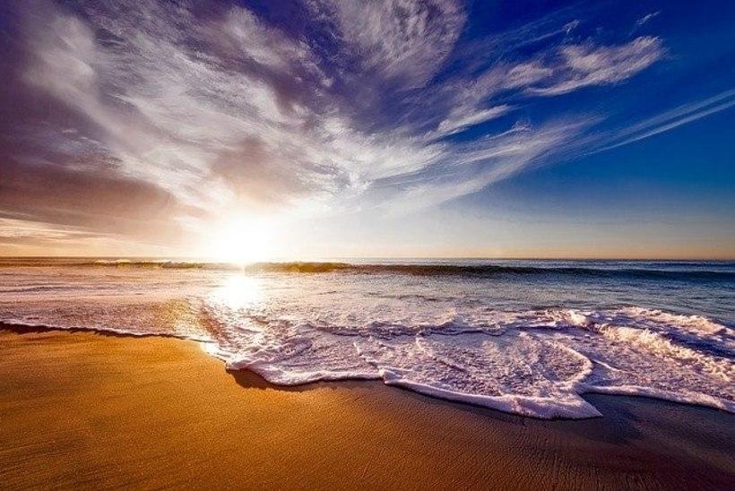 Just selles riigis on kõige rohkem randu!