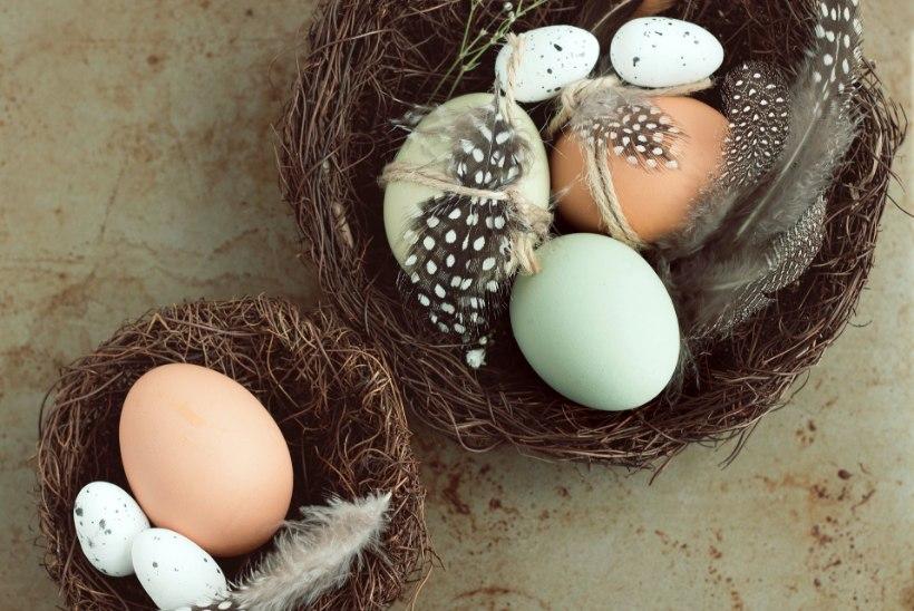 INSPIRATSIOONIKS | Kodu pühadeks kauniks! Pidurüüs munad loovad meeleolu