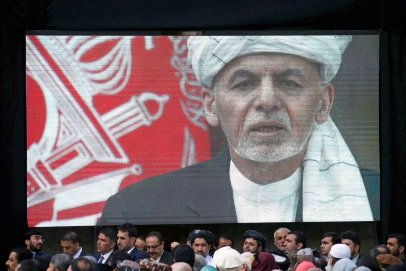 EDUSAMMUD: Taliban ja Afganistani valitsus pidasid Skype'is viljaka videokõne