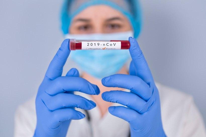 EESTI BIOKEEMIK HOIATAB: ohtlik koroonaviirus suudab nõrga tervisega inimesele tekitada korvamatut kahju