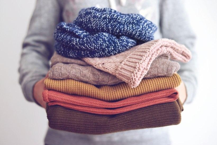 NAISTELEHT TESTIB | Milline villapesuvahend on parim kudumite pesemiseks?