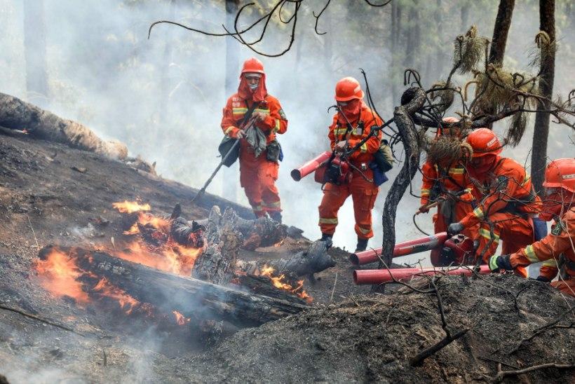 Hiina metsapõlengus hukkusid 18 tuletõrjujat ja nende giid