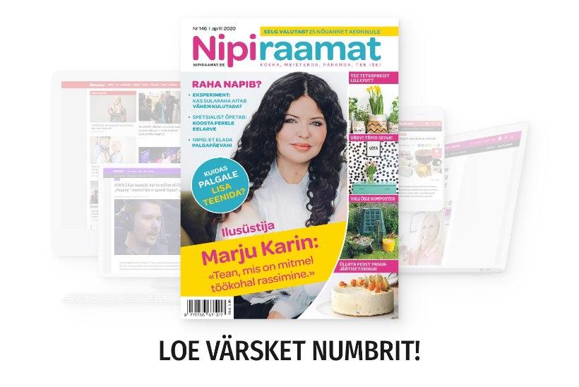 APRILLIKUU NIPIRAAMAT | Loe nüüd ajakirja ka veebis!