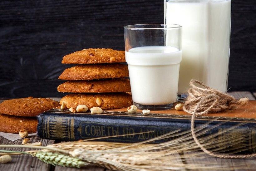 Toitumisnõustaja: taimset piima saab tarbida täpselt samamoodi kui lehmapiima