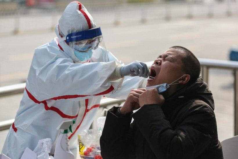 VÄRSKED ANDMED: uus koroonaviirus on võtnud elu 3348 inimeselt, see levib 86 riigis. Itaalias suri neljapäeval 41 patsienti