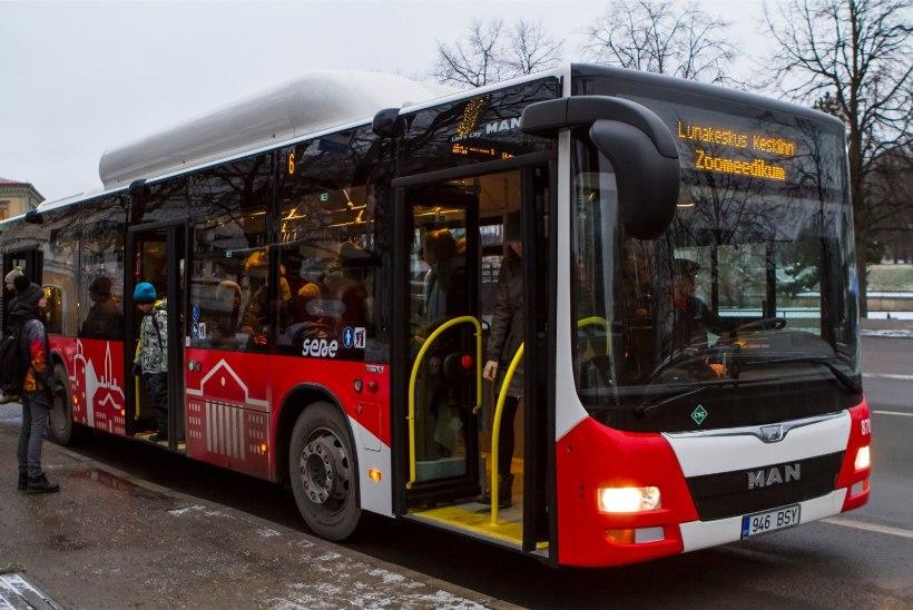 Roolis alkoholi tarvitanud bussijuht peatati tänu tähelepanelikule reisijale, purjutaja kaotas töökoha