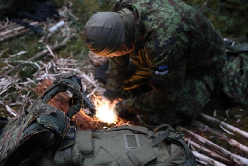 Koroona valvel: ajateenijad müttavad metsas, valmistudes Kevadtormiks