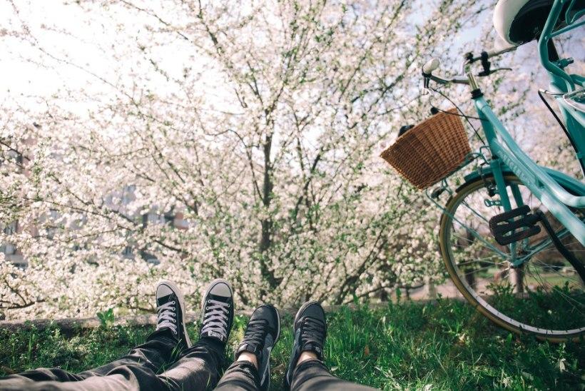 SELLE KUU MÄRKSÕNAD | Krõmpsuta rohelist, putita jalgratas ja korrasta aed!