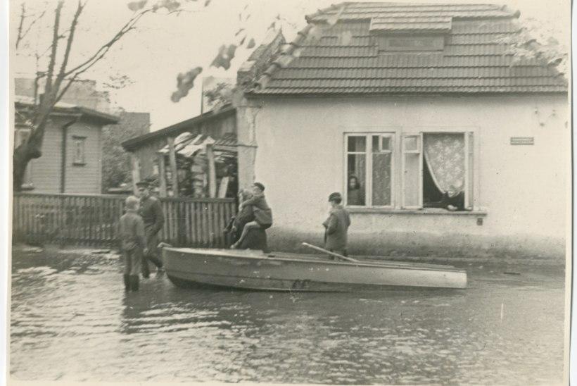 VANA FOTO   Uputus Pärnus sundis inimesi majadest paadiga lahkuma