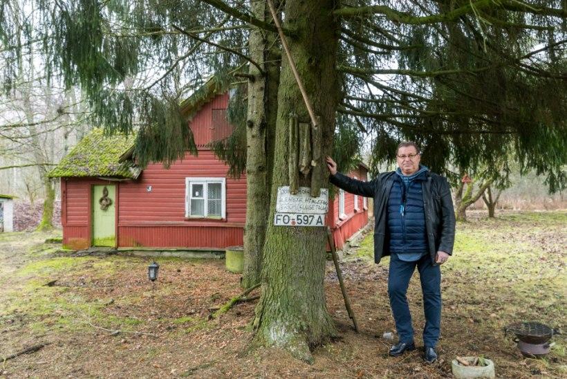 VANAD RAJAD   Erich Kriegeri elu Järvekülas: kooli tuli minna kolm kilomeetrit, ka läbi tormi ning raju