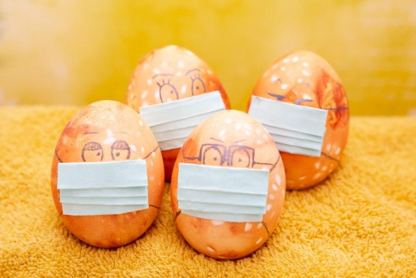 MEGA MUNAGALERII | Munad maskis, kosmilised kerad ja 138 muna karantiinis hooldekodu elanikke rõõmustama
