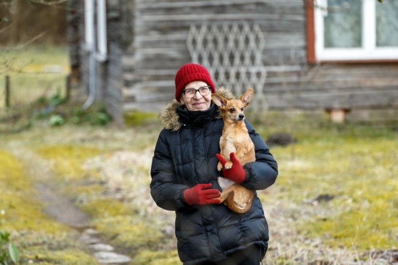 """EAKAD ISOLATSIOONIS: """"Naeratan oma koerale, kassidele, kanadele ja pardile! Ja sõbrannaga teeme telefonis kalli-kalli, ei ole elul häda midagi!"""""""