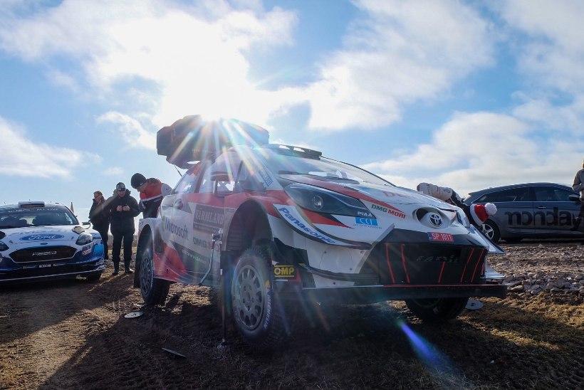HÄDA JA VILETSUS: FIA teatas, et neil pole plaanis Toyota rallitiimi päästa