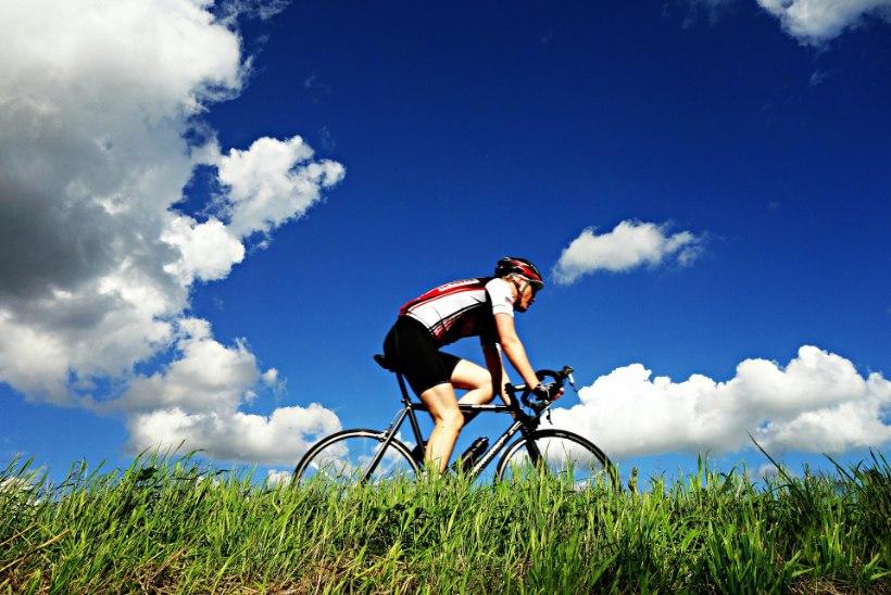 Jalgrattasõbra meelespea: mida treenides silmas pidada?